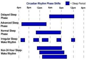 Sleep/Wake Patterns Circadian Rhythm