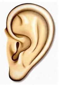auditory hallucinations misperceptions alzheimer's disease dementia