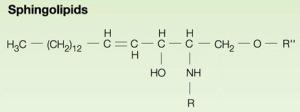 Chemistry of sphingolipid