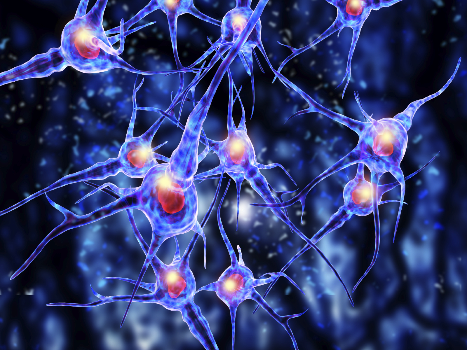 Use Synaptic In A Sentence Neuron Brain Cells Going Gentle Into That Good